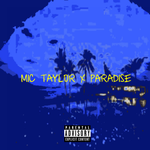 mic taylor paradise