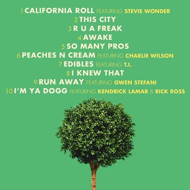 snoop dogg bush tracklist