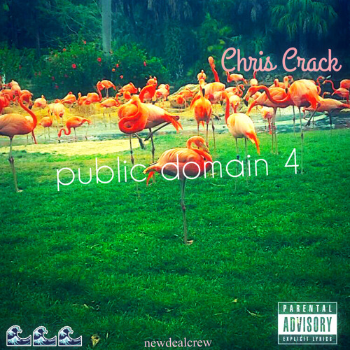 chris crack public domain 4